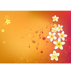 beautiful flowers in grunge background vector image