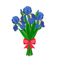 Bouquet of blue irises vector
