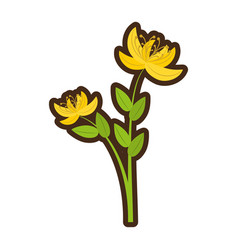Cartoon yellow lily flower natural vector