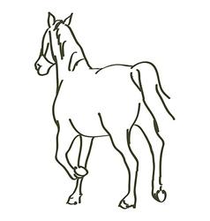 hand drawn horse vector image
