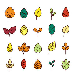 leaves line icon collection vector image
