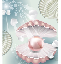 Background with pearl vector image vector image