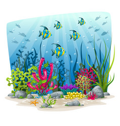 An underwater landscape with animals and plants vector
