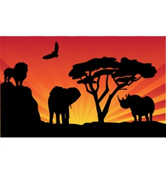 animals and sunrise vector image