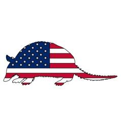 Armadillo United States of America vector