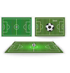ball lies on the grass a football match vector image