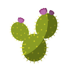 cactus plant icon vector image