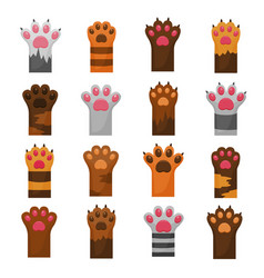 cat cute paws flat color set vector image