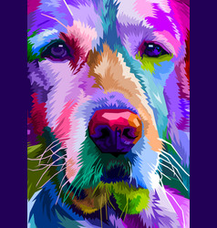 colorful close up golden retriever dog on pop art vector image