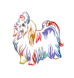 Colorful decorative standing portrait of maltese vector