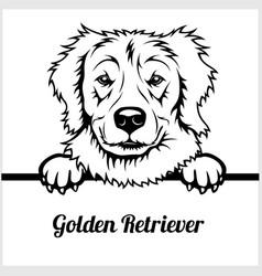 golden retriever - peeking dogs - - breed face vector image