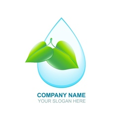 Organic logos Green leaf and blue water drop Eco vector