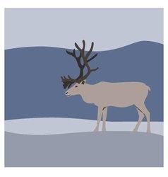 Reindeer in winter mountains vector image