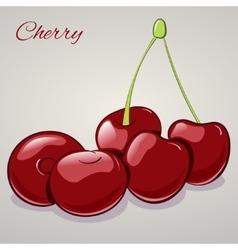Cartoon sweet cherries isolated on grey background vector image vector image