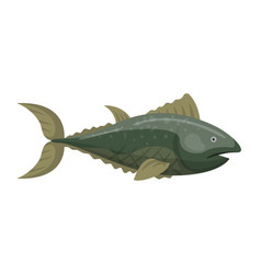 Fish redfin nature animal seafood vector