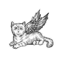 Angel flying kitten sketch engraving vector