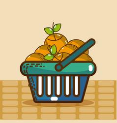 basket with oranges super market products vector image