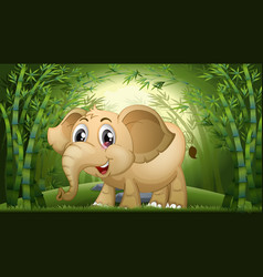 elephant in bamboo forest vector image