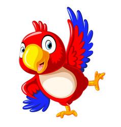 Happy parrot cartoon dancing vector