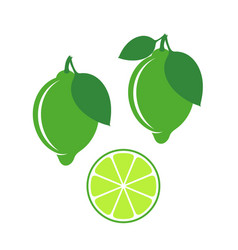 lime vector image