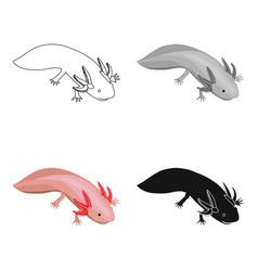 Mexican axolotl icon in cartoon style isolated vector