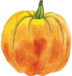 orange pumpkin with a green tail vector image