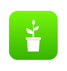 plant in clay pot icon digital green vector image