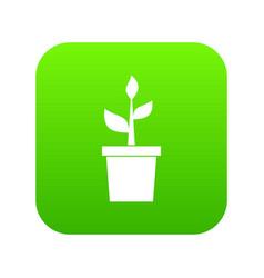 Plant in clay pot icon digital green vector