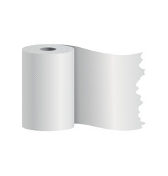realistic toilet paper or kitchen towel roll vector image