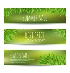 Set of summer sale banners with green leaves vector