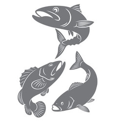 silhouettes of fish vector image