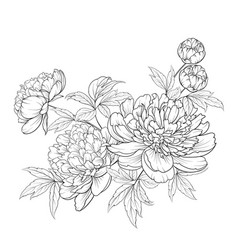 Spring flowers bouquet of contour style flower vector
