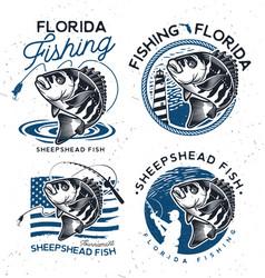 vintage sheepshead fish emblems and labels vector image