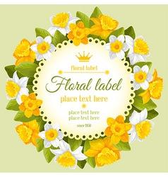 daffodils vector image vector image