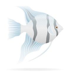aquarium fish 03 vector image