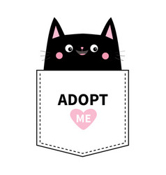 Adopt me black cat in pocket cute cartoon vector