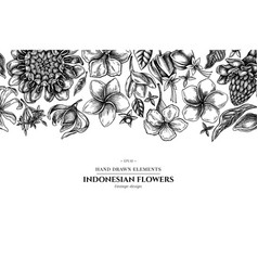 Floral design with black and white plumeria vector