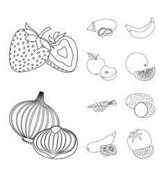 Isolated object of vegetable and fruit sign vector