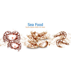 seafood isolated template crab mussels seafood vector image