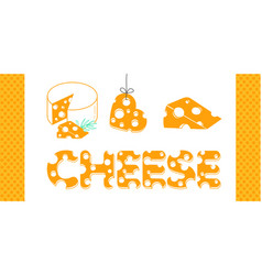 set of cheese icons vector image