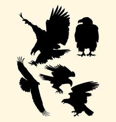 silhouette eagle vector image