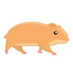 walking hamster icon cartoon style vector image