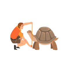 Zoo worker or veterinarian examining and measuring vector