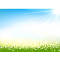 nature background with grass and light effects vector image vector image