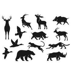 birds and animals isolated silhouettes vector image