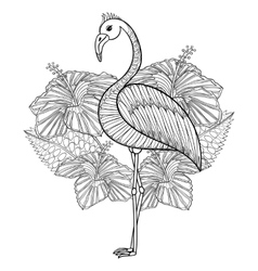 coloring page with flamingo in hibiskus entangle vector image