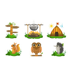 cute woodland animals and camping elements set vector image