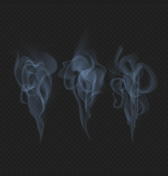 delicate realistic smoke fog or mist waves vector image