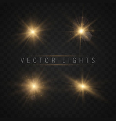 lights sparkles isolated vector image