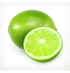 Lime citrus fruit icon vector